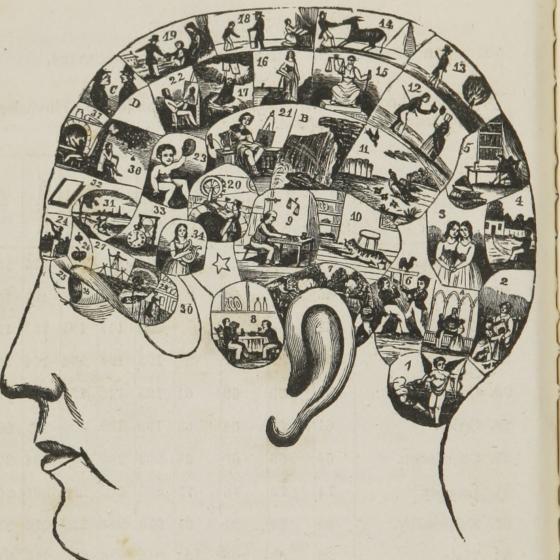 plaatje van hoofd vol met herinneringen